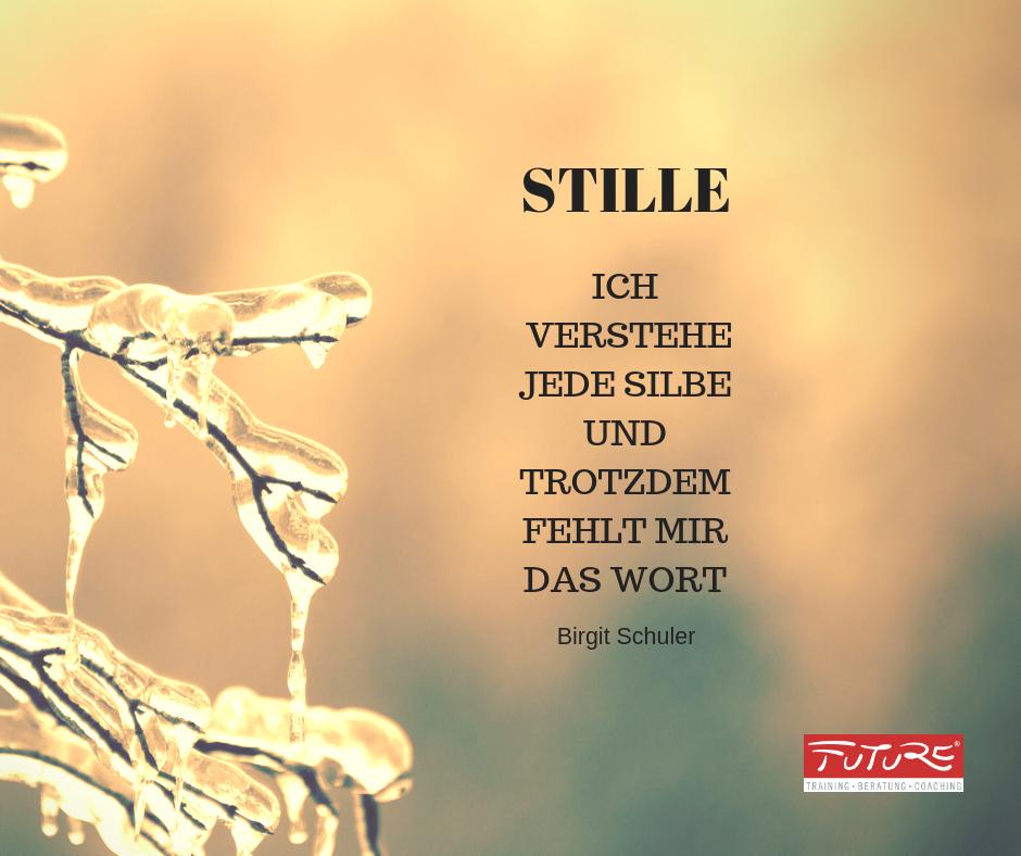 Stille Zitat Birgit Schuler - ICH VERSTEHE JEDE SILBE UND TROTZDEM FEHLT MIR DAS WORT